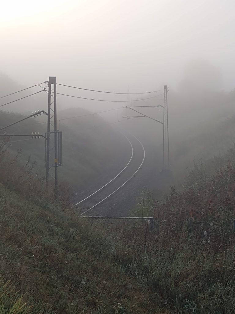 Rail tracks in the morning mist.